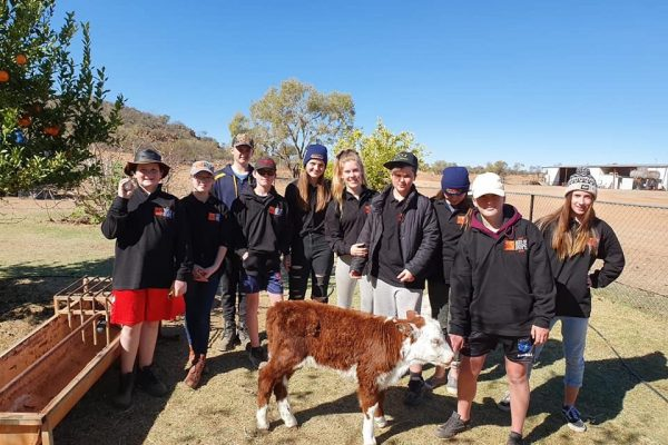 Kids Camp group with calf